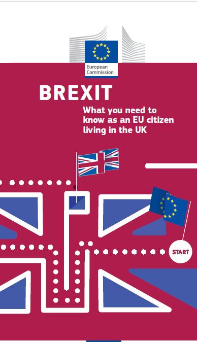 brexit leaflet